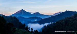horizon view of mountains