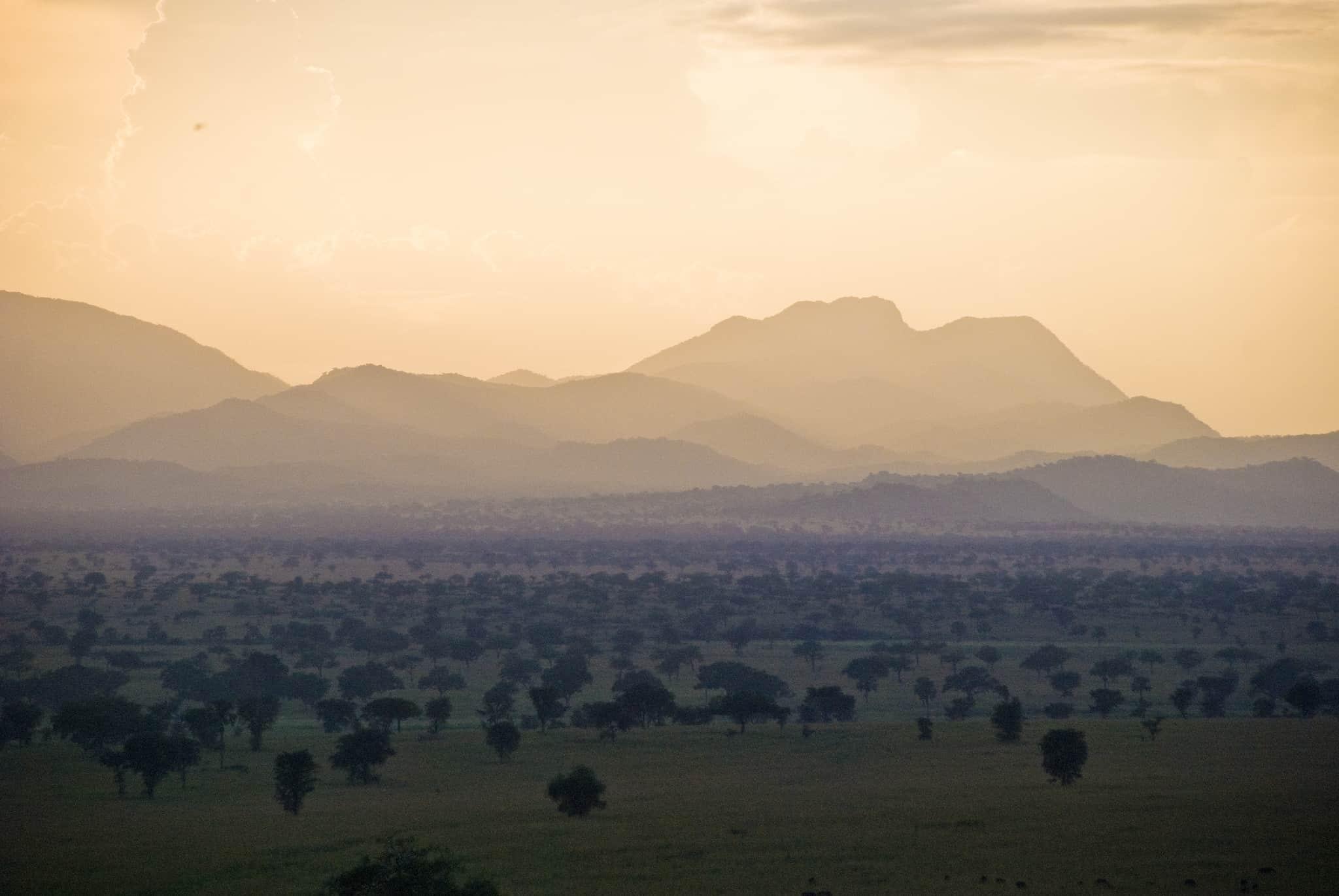 Kidepo Wildlife Bliss Safari - Top Image