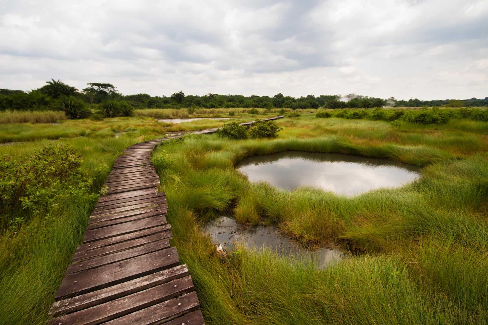 Semuliki National Park II