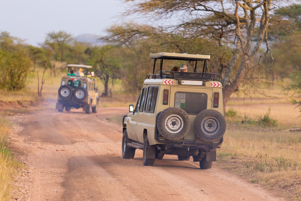 Tipping Tips for Your Ugandan Safari
