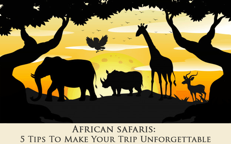 African Safaris: 5 Tips To Make Your Trip Unforgettable