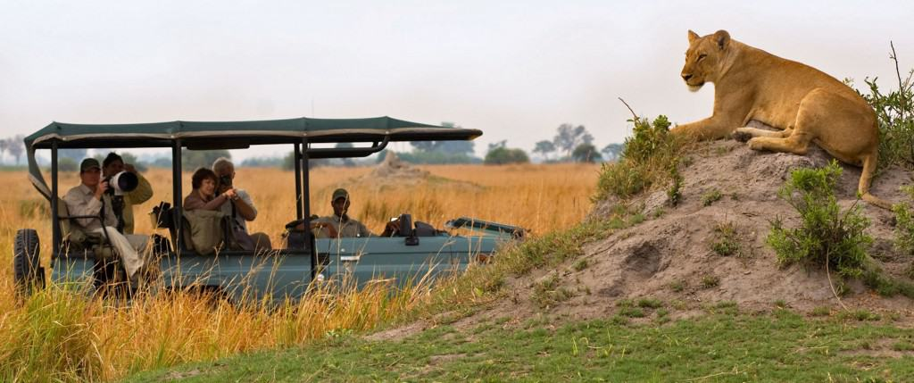 Planning an African Safari: Where should I stop first?